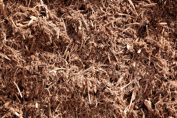 Hardwood Mulch vs. Leaf Mulch: Which is Best for Your Vegetable Garden?
