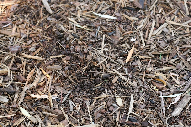 Mulch Delivery & The Hardwood Difference